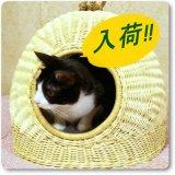 籐製ペットハウス(猫たちのお気に入り その2)